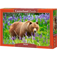 упаковка игры Медведь на лугу 500 элементов