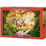 упаковка игры Королевская семья 1000 элементов