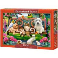 упаковка игры Домашние животные в парке 1000 элементов