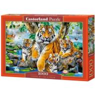 упаковка игры Тигры у ручья 1000 элементов