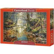 упаковка игры Пазл «Осенний лес» 2000 элементов