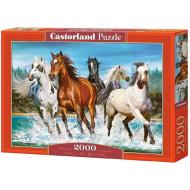 упаковка игры Пазл «Зов природы» 2000 элементов