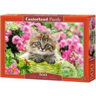 упаковка игры Пазл «Котёнок в цветочном саду» 500 элементов