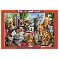 упаковка игры Пазл «Дом кошек» 2000 элементов