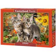 упаковка игры Пазл Приятели котята 1500 элементов Castorland
