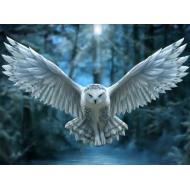 упаковка игры Пазл Super 3D «Ночной страж» 500 элементов