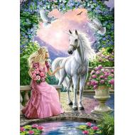 упаковка игры Пазл Волшебный сад 500 элементов Castorland