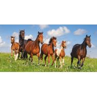 упаковка игры Пазл Табун лошадей 4000 элементов Castorland