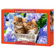 упаковка игры Пазл Два котенка 1500 элементов Castorland