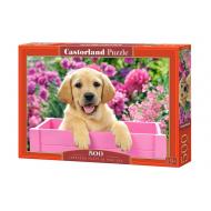 упаковка игры Пазл Щенок в коробке 500 элементов Castorland