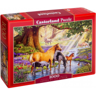 упаковка игры Пазл Лошади на реке 1000 элементов Castorland