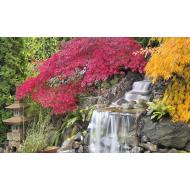 упаковка игры Пазл Водопад в японском саду 3000 элементов Step Puzzle