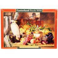 упаковка игры Пазл Живопись 3000 элементов Castorland