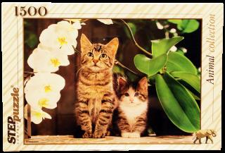 Пазл Котята и орхидея 1500 элементов Step Puzzle