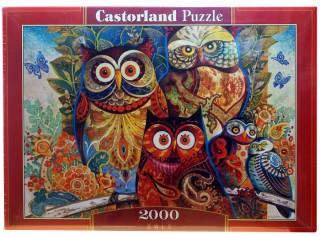 Пазл Совы 2000 элементов Castorland