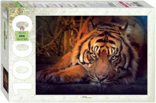 Пазл «Сибирский тигр» 1000 элементов