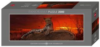 Пазл Леопард на рассвете Alexander van Humboldt 2000 деталей