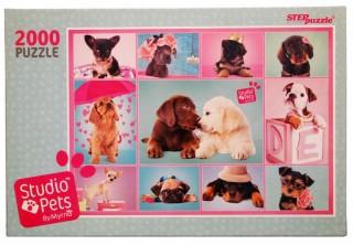 Пазл Studio Pets By Myrna 2000 элементов Step Puzzle
