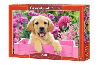 Пазл Щенок в коробке 500 элементов Castorland