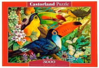 Пазл Туканы 3000 элементов Castorland
